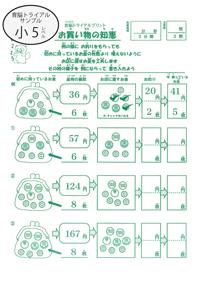 sample5